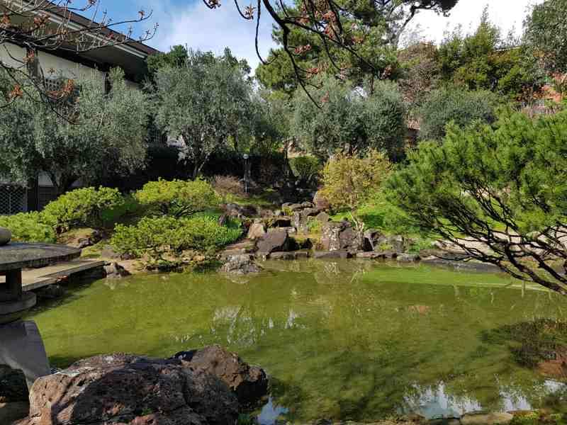 Il giardino dell 39 istituto giapponese di roma for Laghetto giapponese