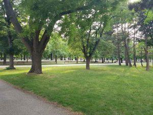 Parco del Prater