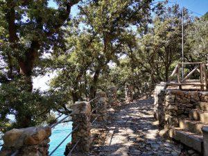 Sentiero nella baia di San Fruttuoso